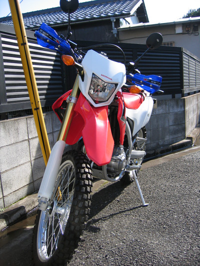 Crf250l_now